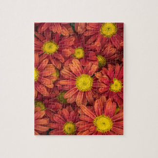 Orange Flowers Jigsaw Puzzle