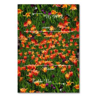 Orange Garden Table Cards