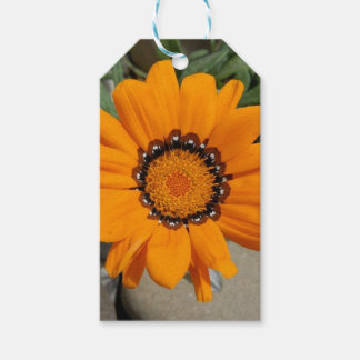 Orange Gazania Flower With Natural Background Pack Of Gift Tags