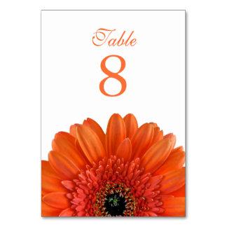 Orange Gerbera Daisy White Wedding Table Cards
