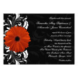 Orange Gerbera Daisy with Black and White Scroll Personalized Announcement