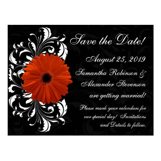 Orange Gerbera Daisy with Black and White Scroll Postcards