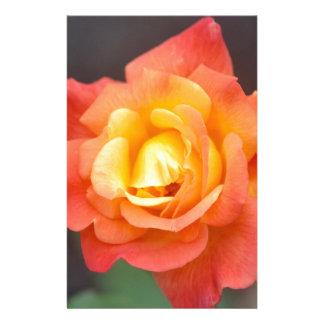 Orange Glory Stationery