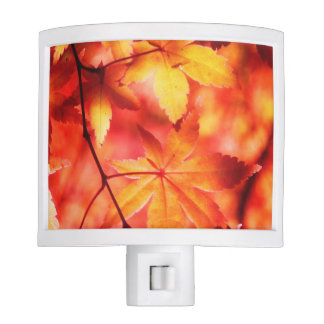Orange Golden Maple Autumn Leaves Nite Lites