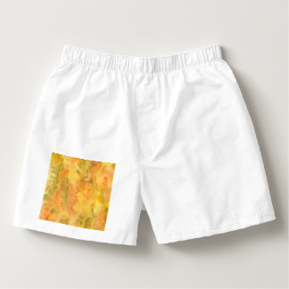 Orange Green Watercolor Men's Boxers