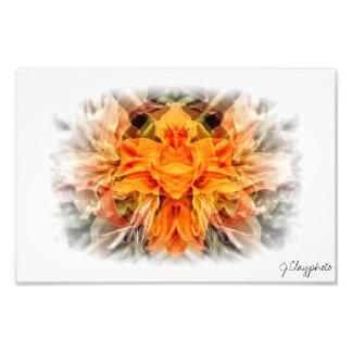 Orange Greenie Face Mirrored Image 12x8 Photo Print