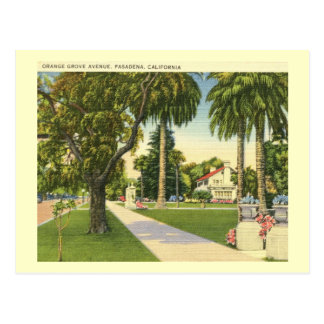 Orange Grove Ave., Pasadena, California Vintage Postcard