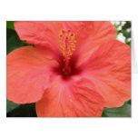 Orange Hibiscus Flower Mscro Custom Giant Card