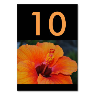 Orange Hibiscus Wedding Table Number Card Table Cards