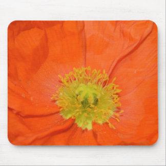 Orange Iceland Poppy III Mouse Pad