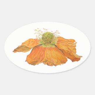 Orange Icelandic Poppy Oval Stickers, Glossy Oval Sticker