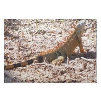Orange Iguana hunts Placemat