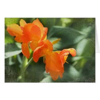 Orange Iris Greeting Card