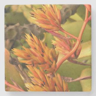Orange Kauai Flowers Stone Coaster