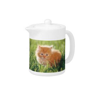 Orange Kitten Cat Teapot