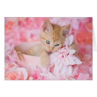 Orange Kitten Loki Pink Floral Blank Notecard