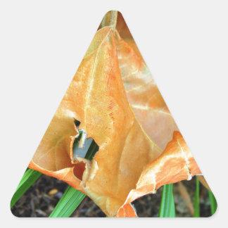 Orange Leaf Triangle Sticker