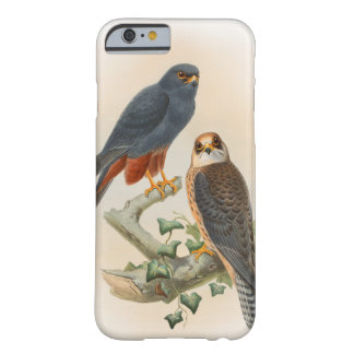 Orange-legged Hobby Falcon Gould Birds of Britain Barely There iPhone 6 Case