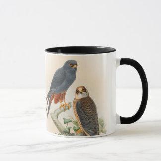 Orange-legged Hobby Falcon Gould Birds of Britain Mug