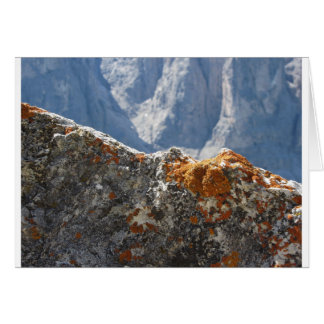 Orange lichens growing on rock face card