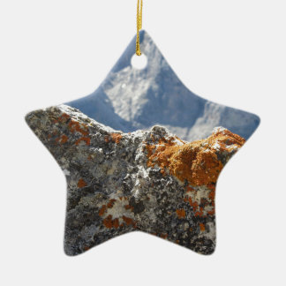 Orange lichens growing on rock face ceramic ornament