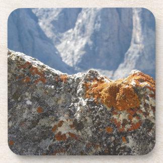 Orange lichens growing on rock face coaster