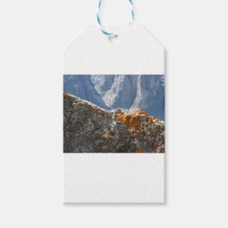 Orange lichens growing on rock face gift tags