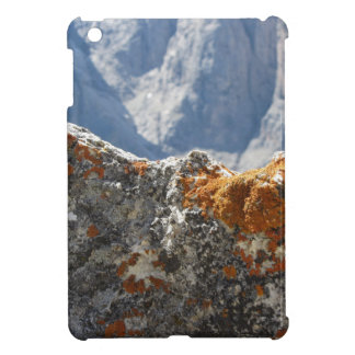 Orange lichens growing on rock face iPad mini cover