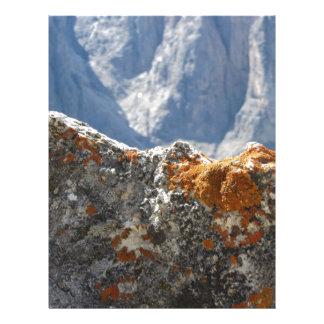 Orange lichens growing on rock face letterhead