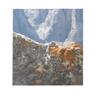 Orange lichens growing on rock face notepad