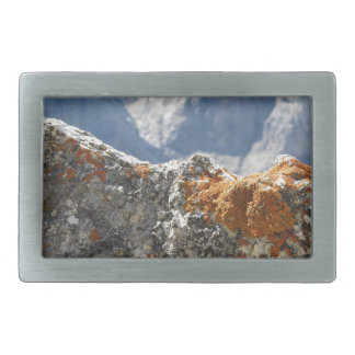 Orange lichens growing on rock face rectangular belt buckle