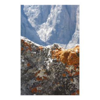 Orange lichens growing on rock face stationery