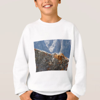 Orange lichens growing on rock face sweatshirt