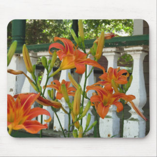 Orange Lilies by Cottage Porch, Martha's Vineyard Mouse Pad
