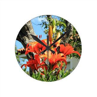 Orange lilium flowers in bloom in garden 2 clock