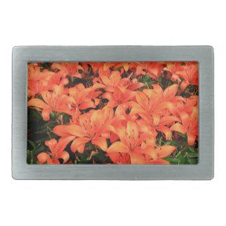 Orange liliums in bloom belt buckles