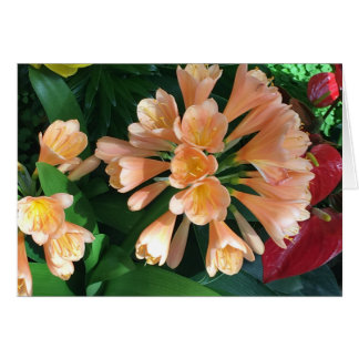 orange Lilly Notecard