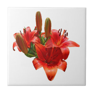 Orange Lily Blossoms - Right Facing Ceramic Tile