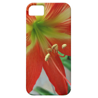 orange lily iPhone 5 cover