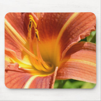 Orange Lily Mouse Pad