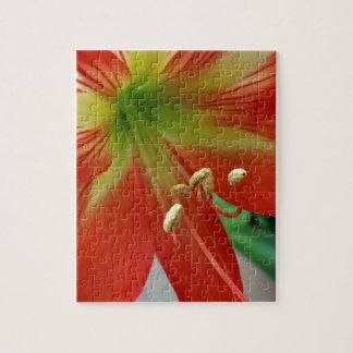 orange lily puzzle