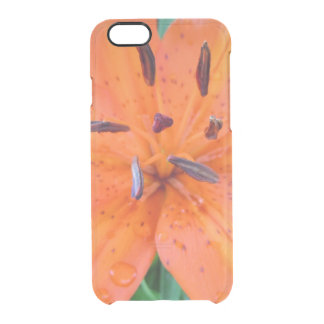 Orange Lily with water drops Clear iPhone 6/6S Case