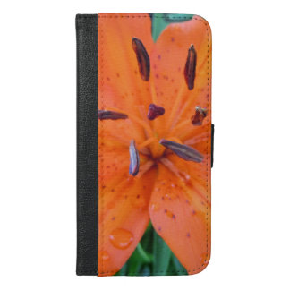 Orange Lily with water drops iPhone 6/6s Plus Wallet Case