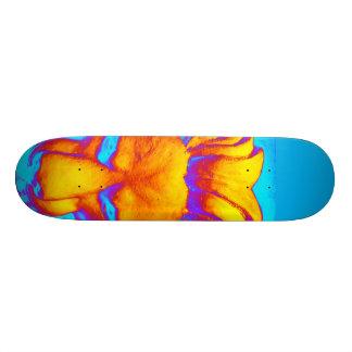 Orange lionhead skateboard