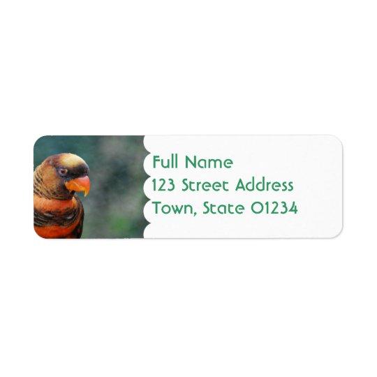 Orange Lorikeet Mailing Labels