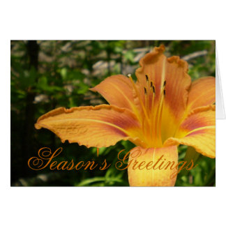 Orange Lys Flower Card