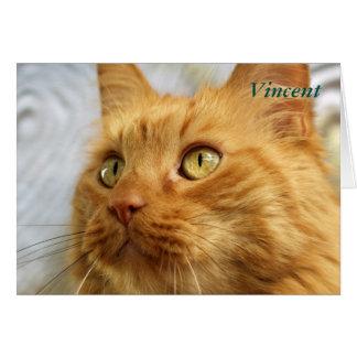 Orange Maine Coon Cat Card