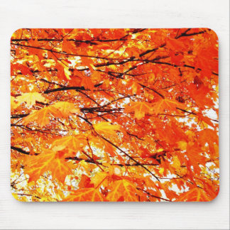 Orange Maple Leaves in Autumn Mousepad