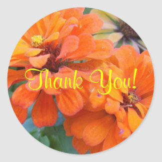 Orange Marigolds Classic Round Sticker