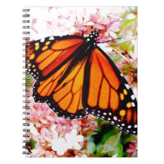 Orange Monarch on pink flowers Spiral Notebook